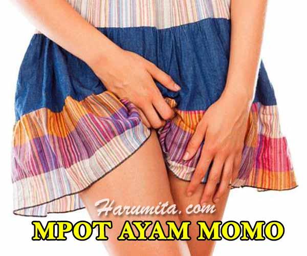 cara-pemakaian-mpot-ayam-momo