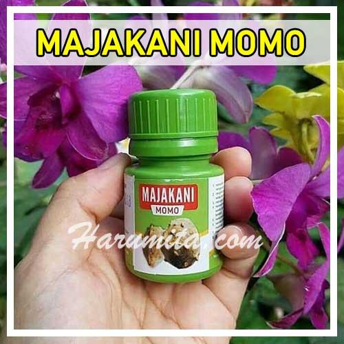 Review Majakani Momo