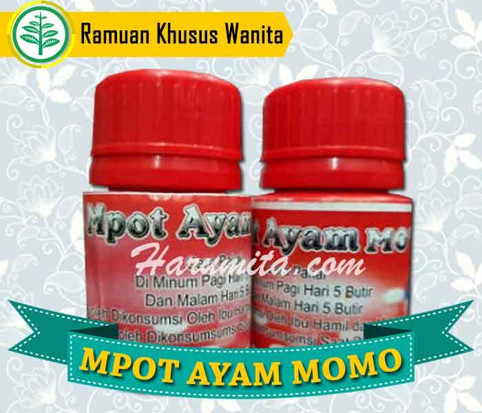 Mpot Ayam Momoidea