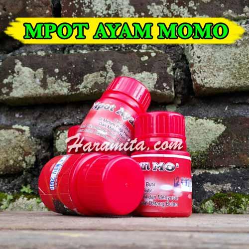 mpot-ayam-momo