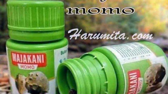 Bahaya Manjakani Momo Untuk Rahim, Khasiat Dan Aturan Minum